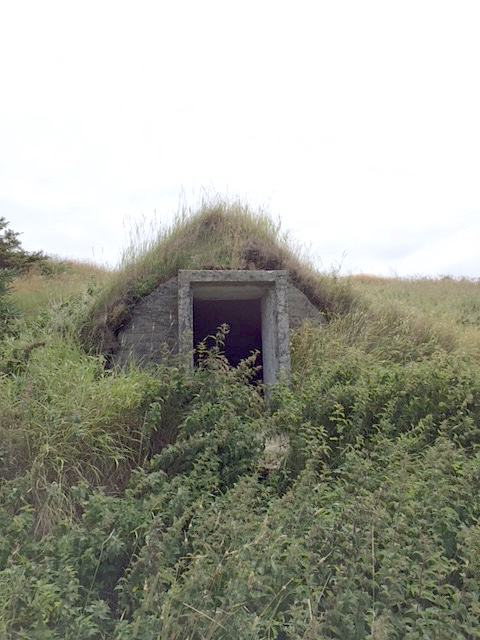 Celebrating Food Preservation Yesterday and Today: An Abandoned Root Cellar in Twillingate, Nfld. | urbnspice.com