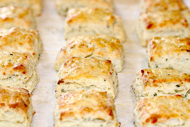 A tray of baked Asiago Cheese and Chive Scones | urbnspice.com